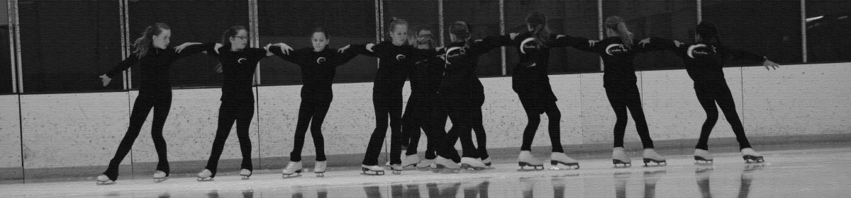Carolina Ice Synchro